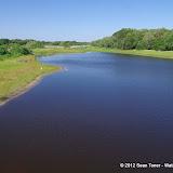 04-06-12 Myaka River State Park - IMGP9874.JPG