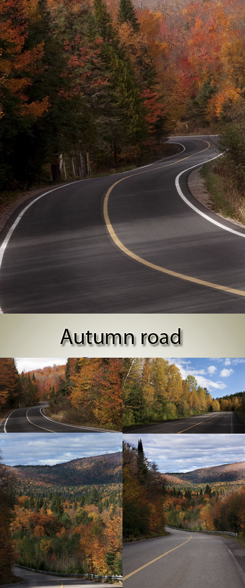 Stock Photo: Empty autumn road