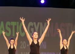 Han Balk Fantastic Gymnastics 2015-1798.jpg