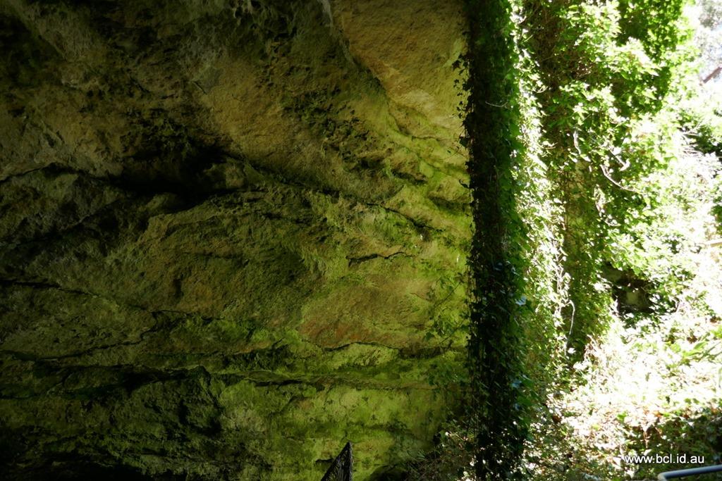 [190304-152-Engelbrecht-Cave-Mt-Gambi%5B2%5D]