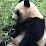 賴素慧's profile photo
