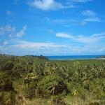 Fiji029.JPG