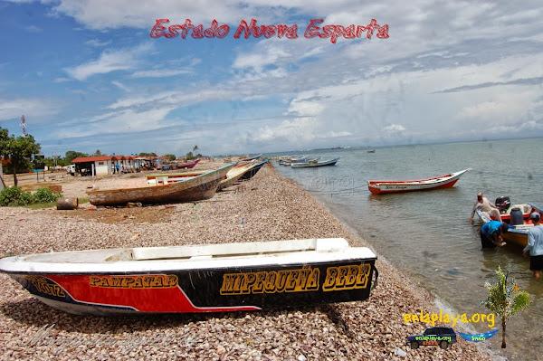 Playa Punta de Piedras NE122; Estado Nueva Esparta, Tubores