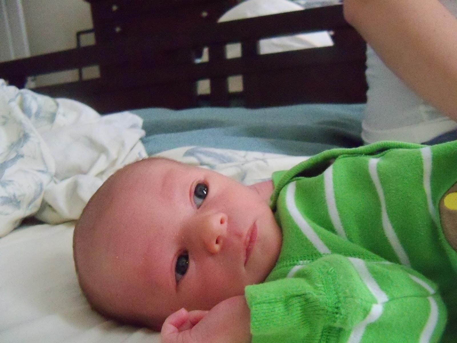 Meet Marshall! - 115_2556.JPG