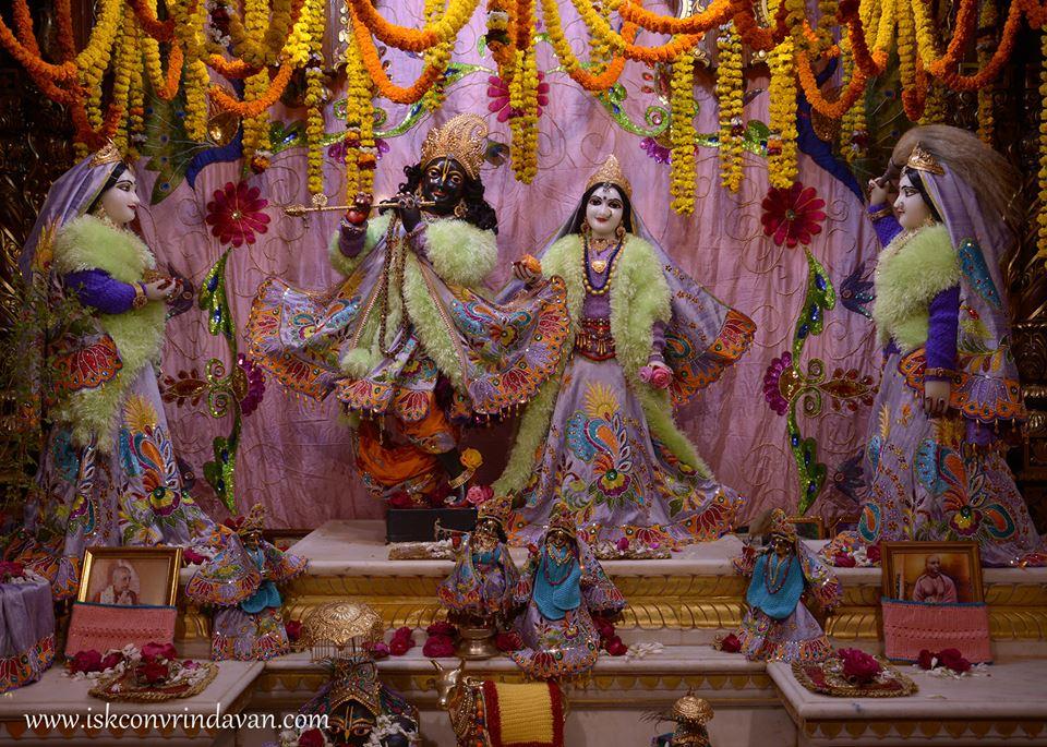 ISKCON Vrindavan Mangla Deity Darshan 16 Jan 2016  (2)