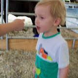 Fort Bend County Fair 2014 - 116_4204.JPG