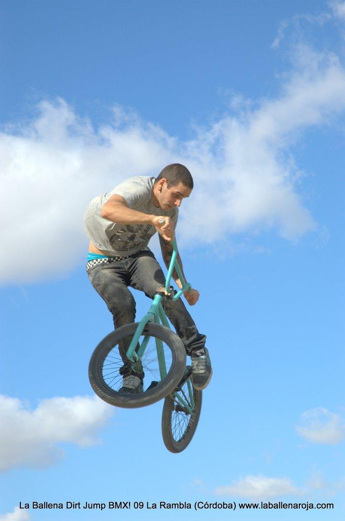 Ballena Dirt Jump BMX 2009 - BMX_09_0011.jpg