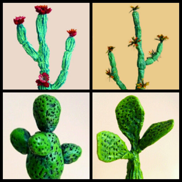 cactus Mardez