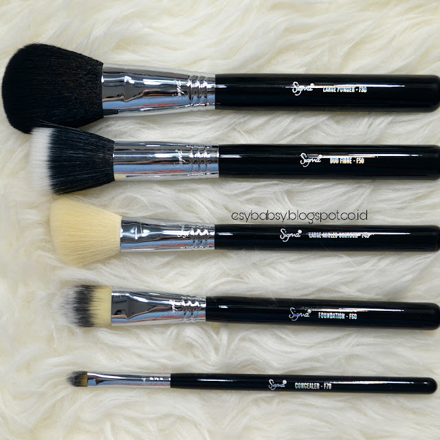 sigma-brush-basic-face-kit-review-esybabsy