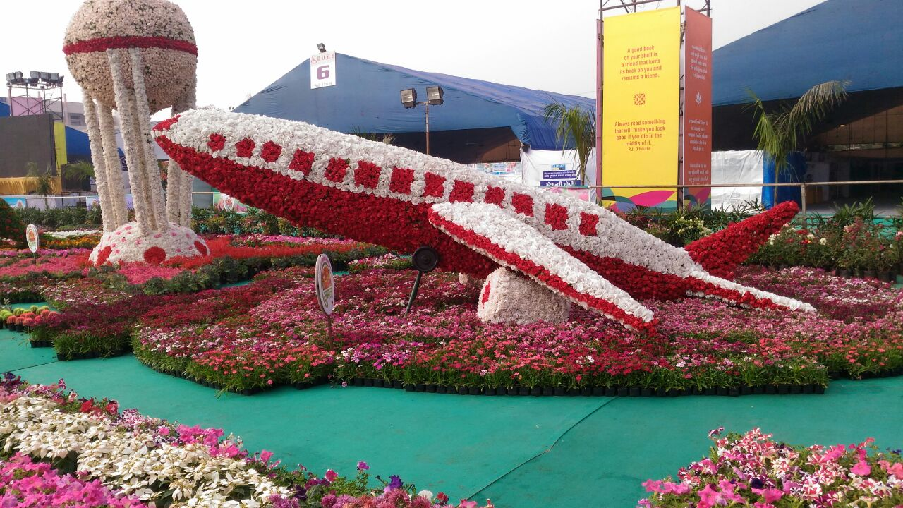 Image result for surat flower festival 2017