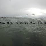 DSC_1626.thumb.jpg