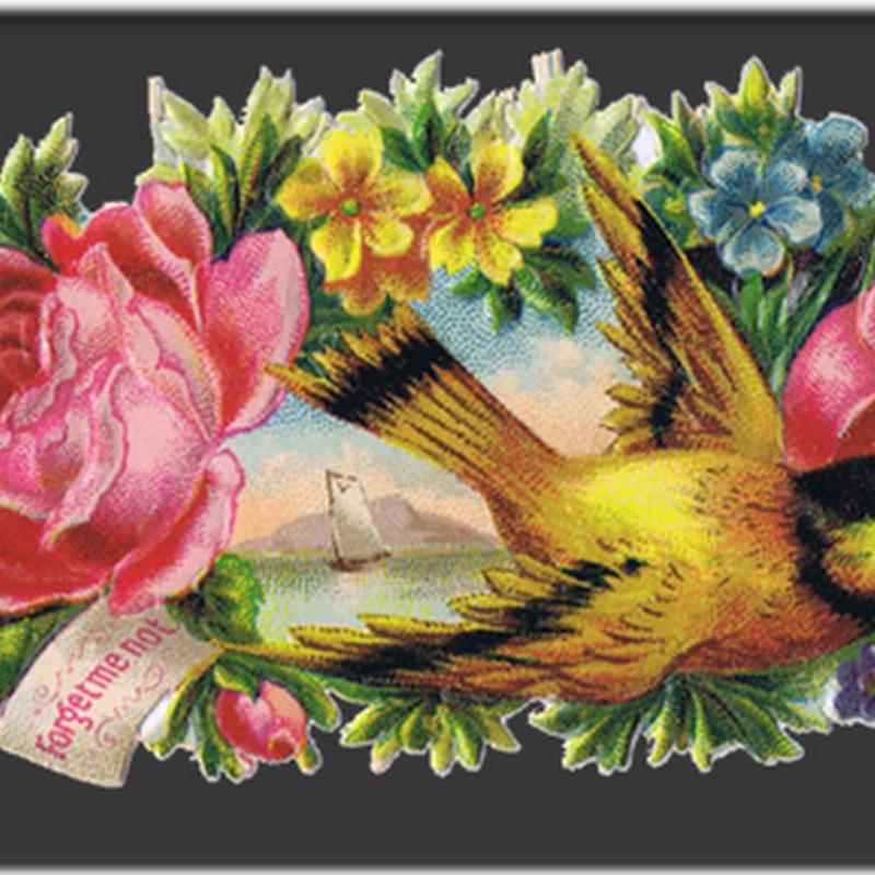 Imagenes victorianas de pájaros