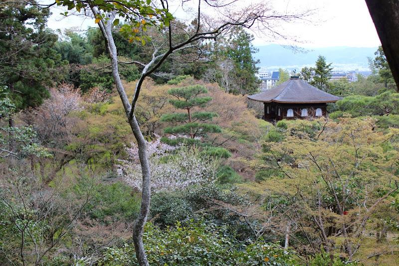 2014 Japan - Dag 8 - marjolein-IMG_1181-0074.JPG