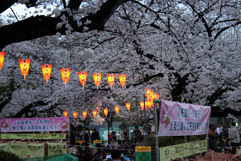 2014 Japan - Dag 1 - marjolein-IMG_0183-0110.JPG