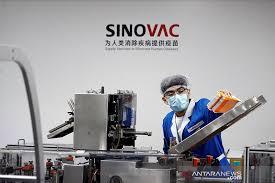 DPR Minta Pemerintah Evaluasi Penggunaan Vaksin Sinovac, Kenapa?