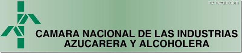 Organizaciones mexicanas