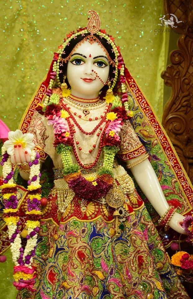 ISKCON GEV Deity Darshan 20 Jan 2017 (10)