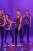 Han Balk Voorster dansdag 2015 middag-2178.jpg