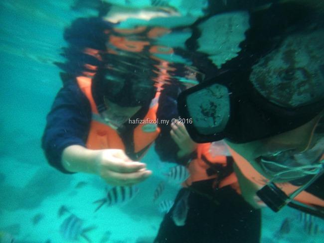 snorkeling pulau redang_6