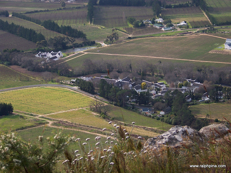 Swiss Farm Excelsior