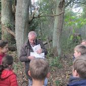 6e leerjaar boszoektocht