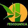 Foto del perfil de FEDEGUADUA Federacion Nacional de Empresarios del Bambú y la Guadua (tú)