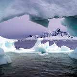 Paradise Bay, Antarctica.jpg