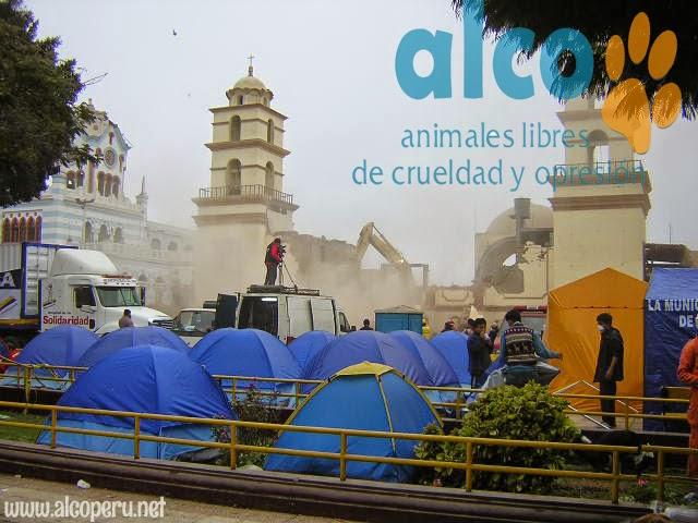 1era visita asistencia animales damnificados terremoto  Pisco 2007 (14)