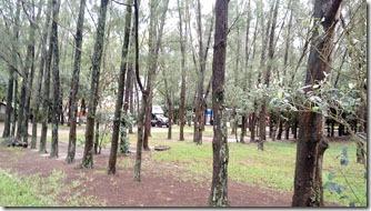 area-de-camping-5