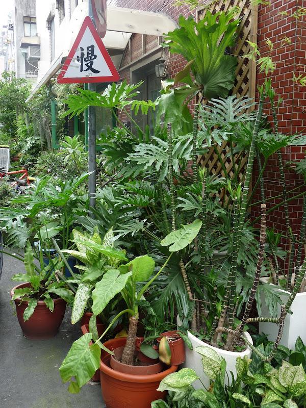 TAIWAN.Taipei - P1110334.JPG