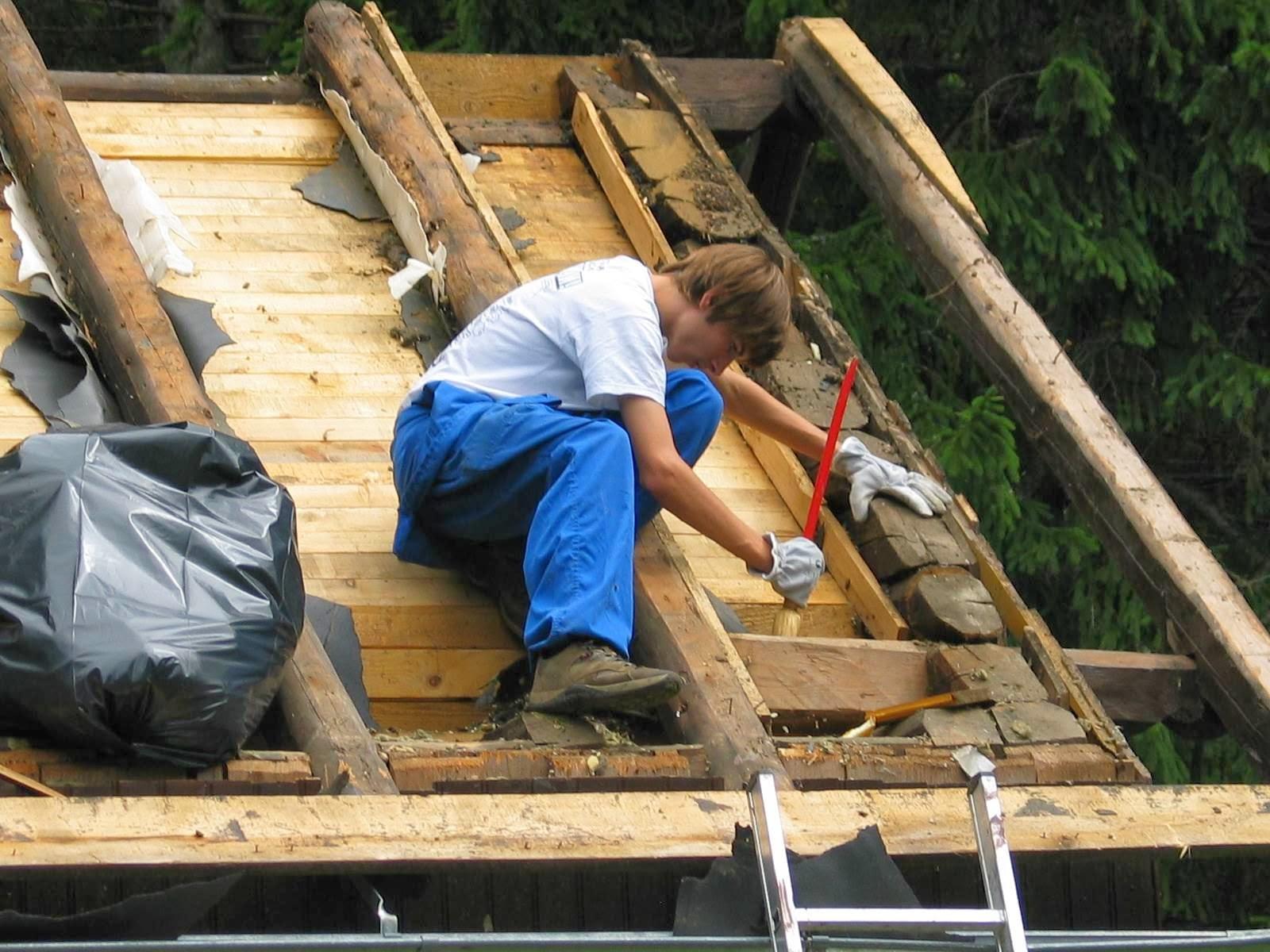 Delovna akcija - Streha, Črni dol 2006 - streha%2B107.jpg