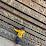 Raghu Nayaka's profile photo
