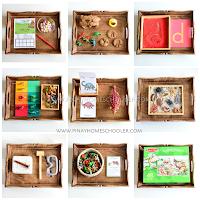 Montessori Inspired Dinosaur Activity Trays for Preschoolers
