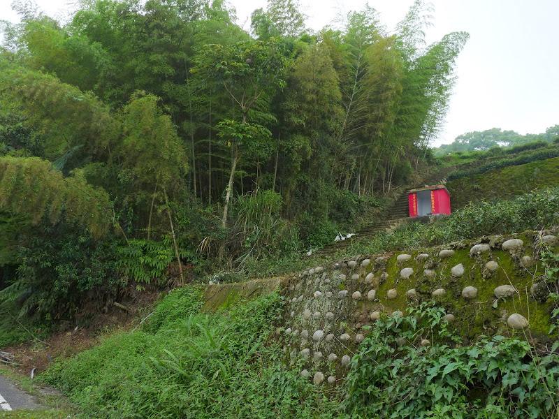 TAIWAN.Dans la région de Nantou, au centre de Taiwan - P1100257.JPG