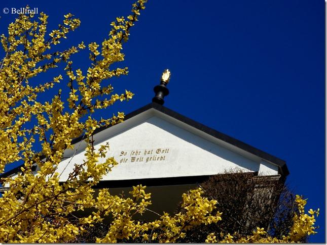 Forsythie und Kreuzweg Kapelle