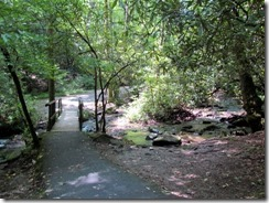 Trail to Mingus Mill