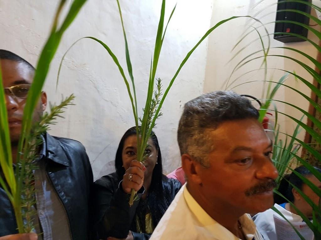 Domingo de Ramos 2017 - WhatsApp Image 2017-04-09 at 12.25.32_1024x768.jpeg