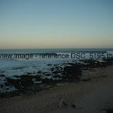 DSC_5195.thumb.jpg
