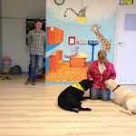 Wizyta Fundacji pomocy labradorom