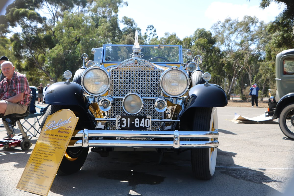 1931 Packard Super 8 Roadster 07.JPG