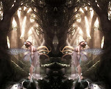 Life Of Glamorous Fairy