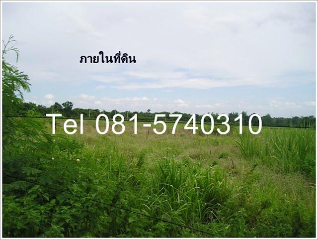 ขายที่ดินเมืองขอนแก่น:land in khonkaen