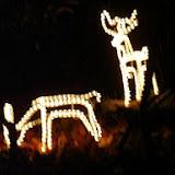 ChristmasLights2005