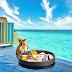 Dining in Hard Rock Hotel Maldives