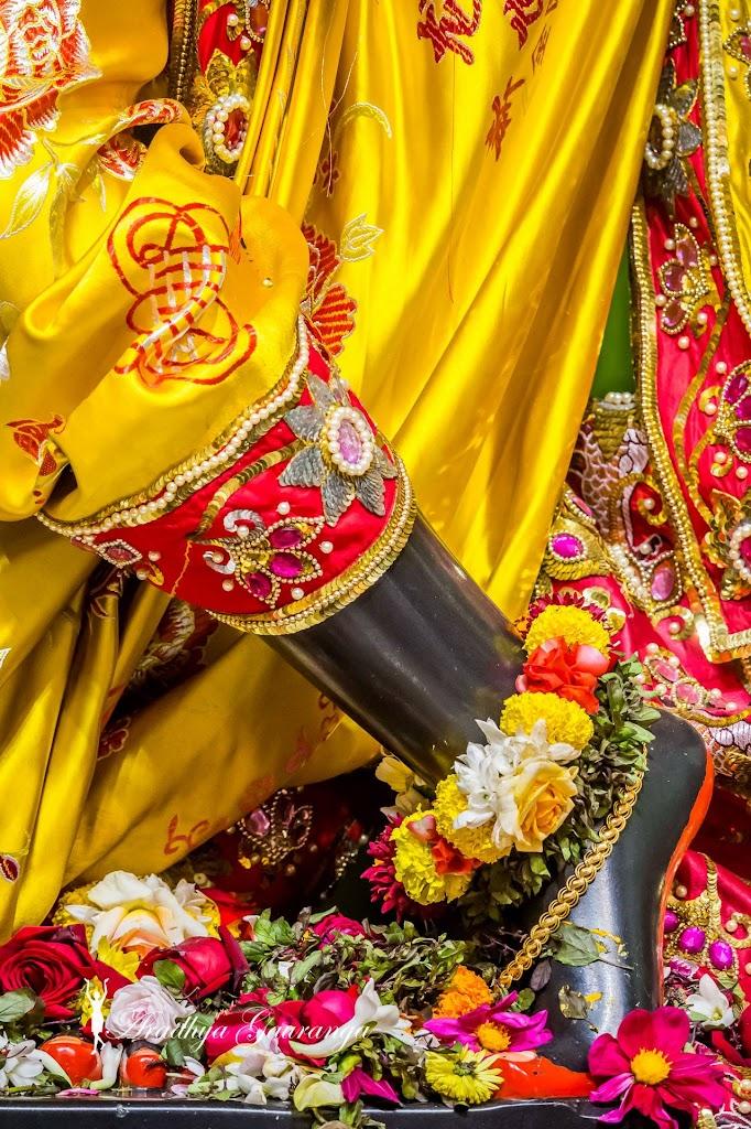 ISKCON Mayapur Deity Darshan 13 Jan 2017 (6)