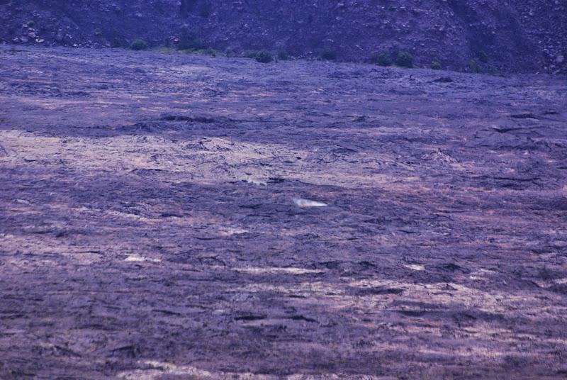 06-20-13 Hawaii Volcanoes National Park - IMGP5226.JPG