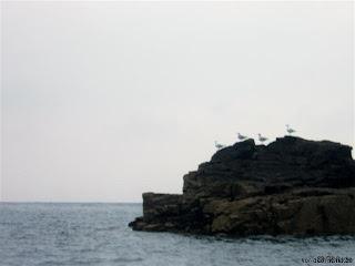 Kanalinseln 2006 - Teil 4