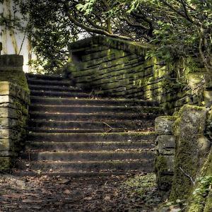 steps 2 copy.jpg