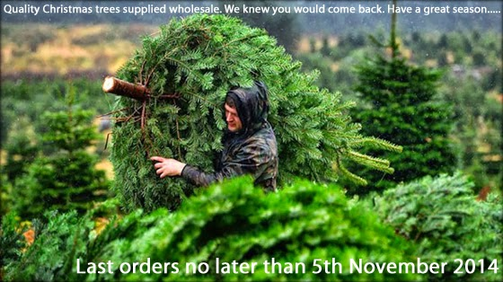 if this is your first ever year selling real christmas trees do not over order be conservative we want to see you next year - Wholesale Christmas Trees