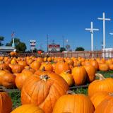 Pumpkin Patch - 115_8278.JPG